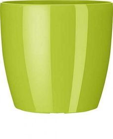 Emsa Casa Brilliant mini 14x13, green